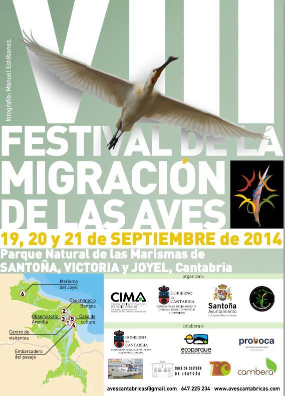 festival migracion