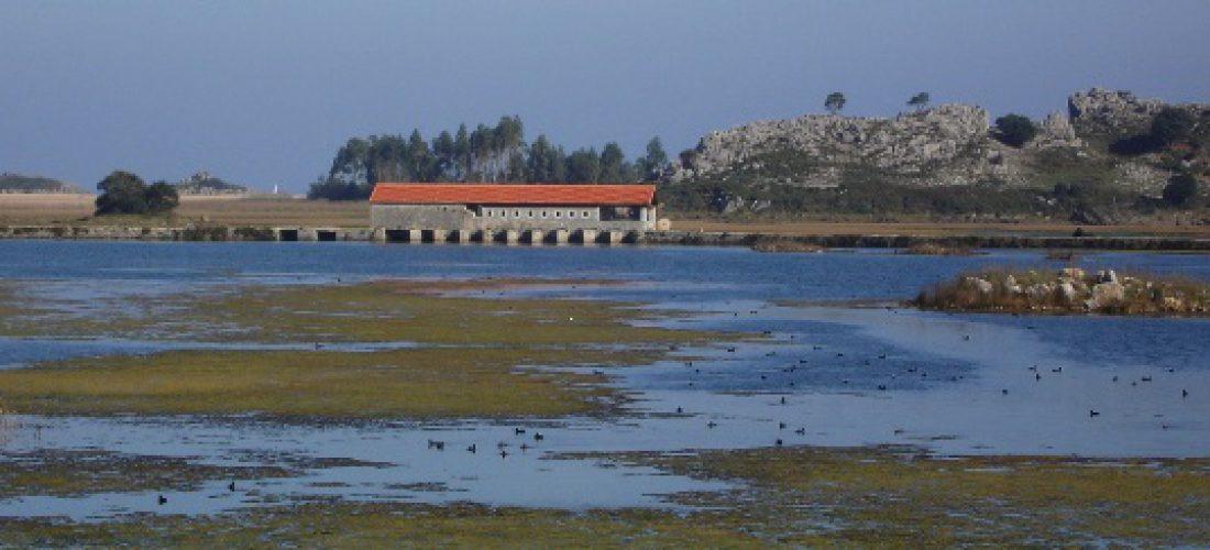 Visitas al Molino de Santa Olaja en el mes de Julio